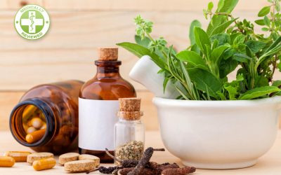 Fertility Tea – Herbal Remedies to Boost Conception Naturally